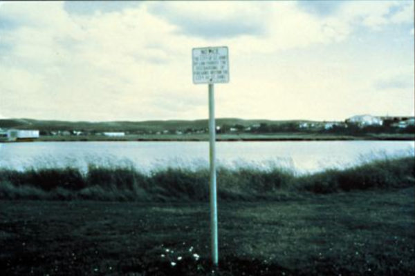 Marlene Creates. The City of St. John's By-Law Forbids the Discharging of Firearms: Language and Land Use (detail). Series of assemblages of three black and white photographs with handwritten text and natural materials gathered from Newfoundland recreational sites (1994)