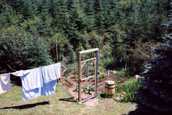 Declan O'Dowd, Garden 8- Water Barrel and Doorway (2010)