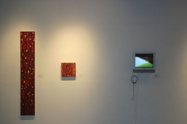 Pulse- Film and Painting After the Image Installation View #9 MSVU Art Gallery (2006)