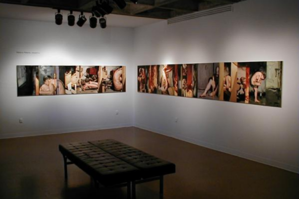 Rebecca Roberts, Untitled (MSVU Gallery installation view 2). Oil on 36 wood panels, 76.4 cm x 8 m overall (1999)