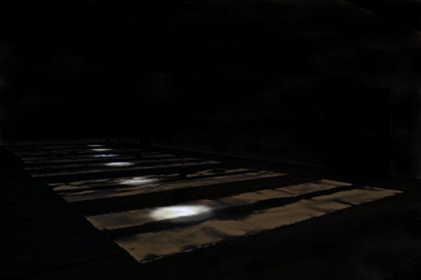 Susan Feindel Installation view of India ink floor canvases, ground floor level (2009)