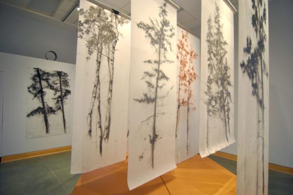 Understory installation at the Kelowna Art Gallery, 2019